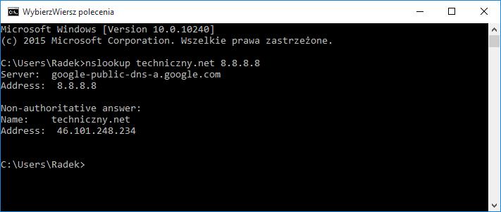 Odpytywanie konkretnego serwera DNS